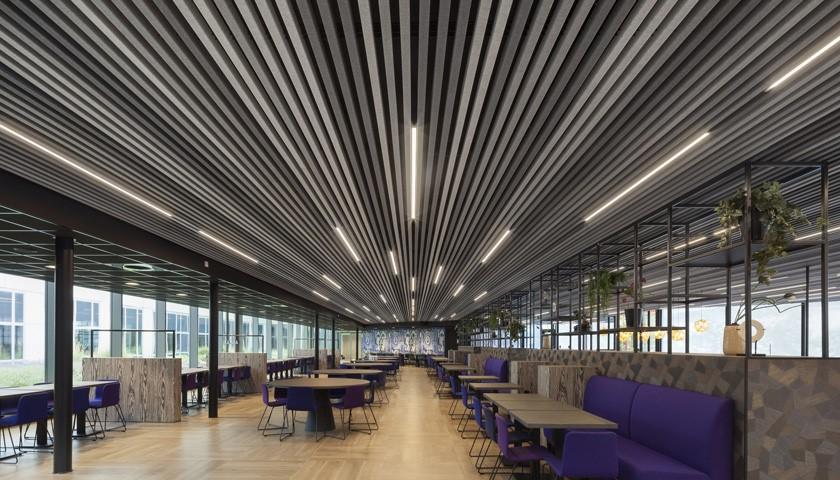 modular felt ceiling