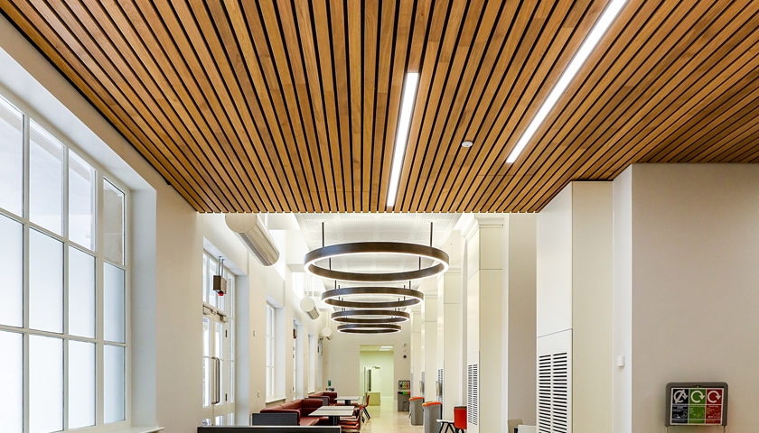 linear wood ceiling